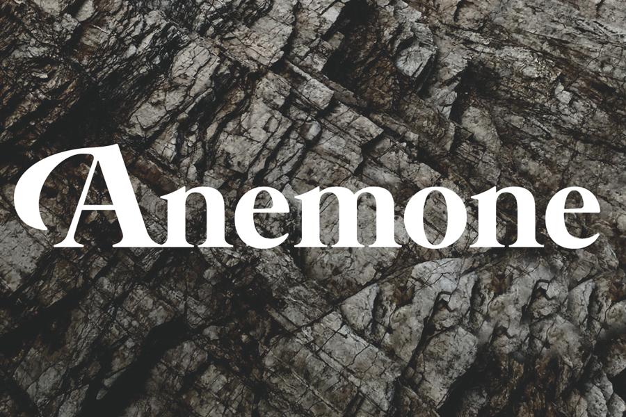 Calculus – Comet Temple 1 (Anemone Recordings)