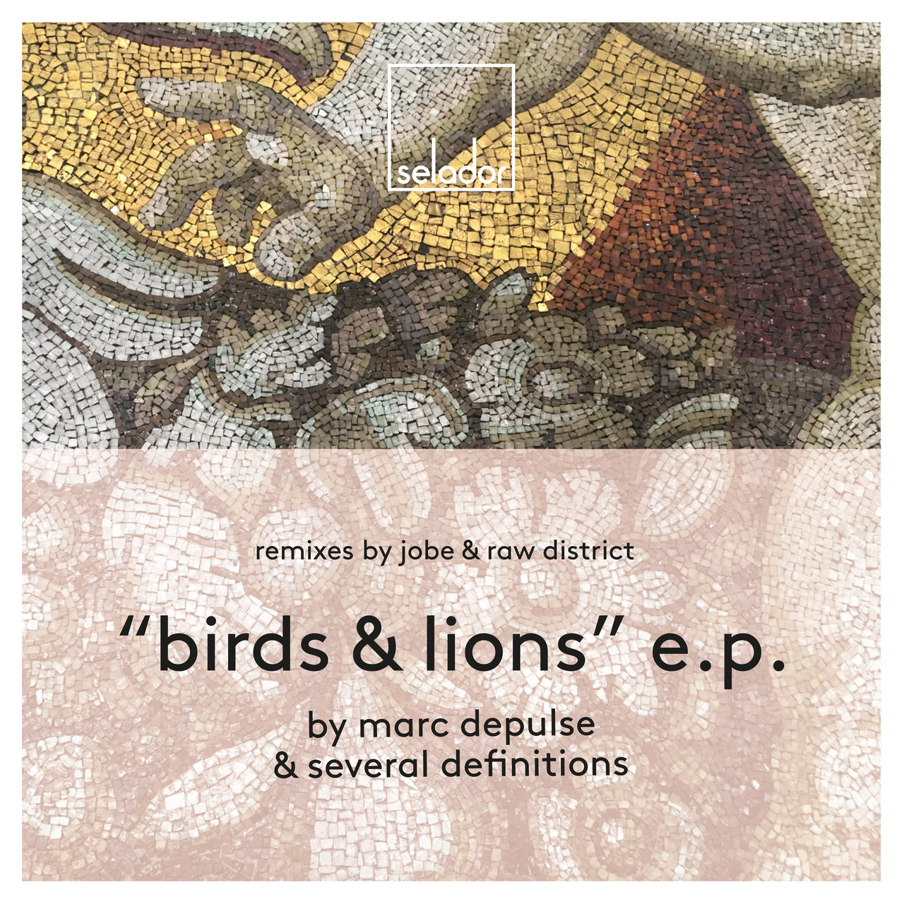 Several Definitions & Marc DePulse – Lions (Raw District Remix) (Selador Recordings)