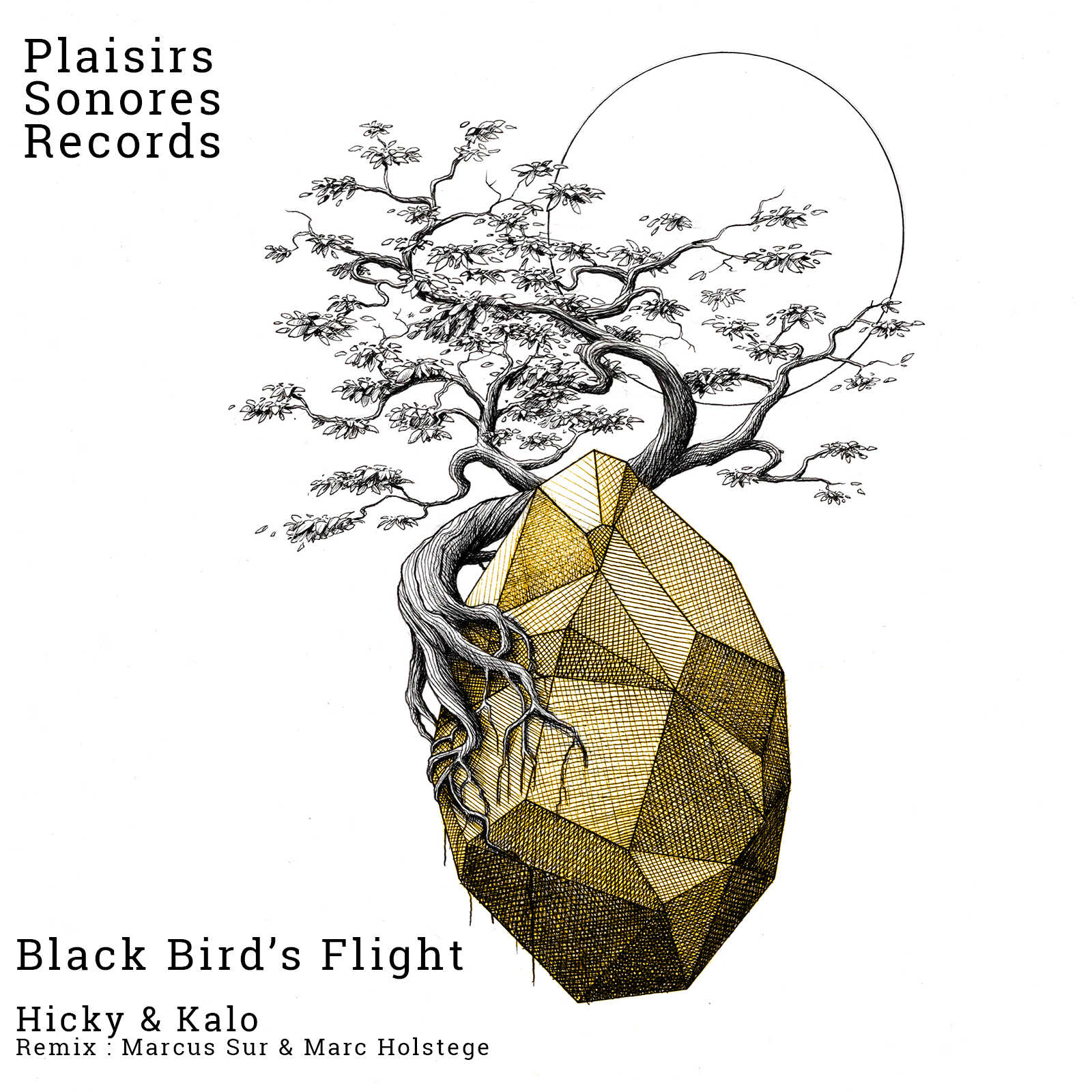 Hicky & Kalo – Black Bird's Flight (Marcus Sur Remix)(Plaisirs Sonores Records)